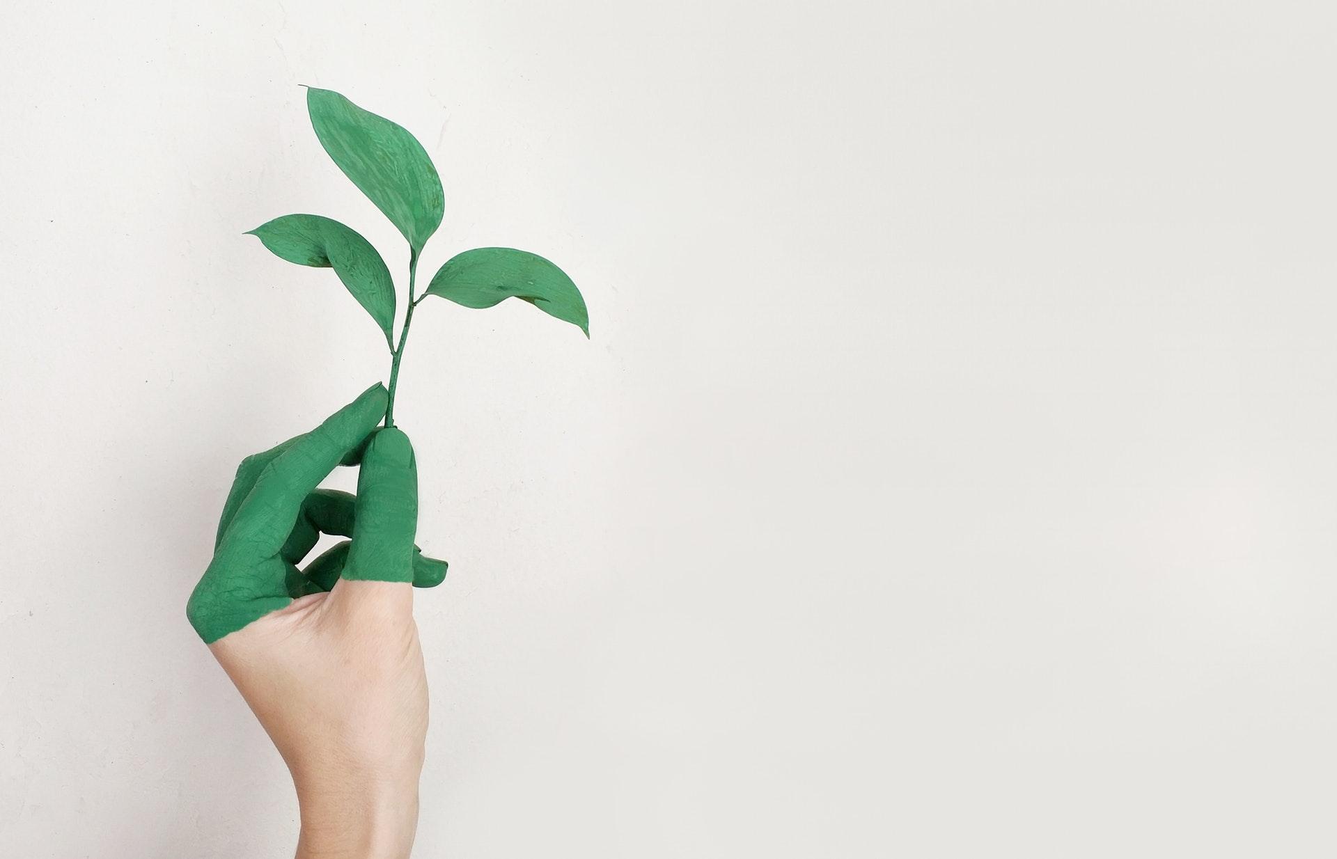 sustentabilidade_2019_planta_interna