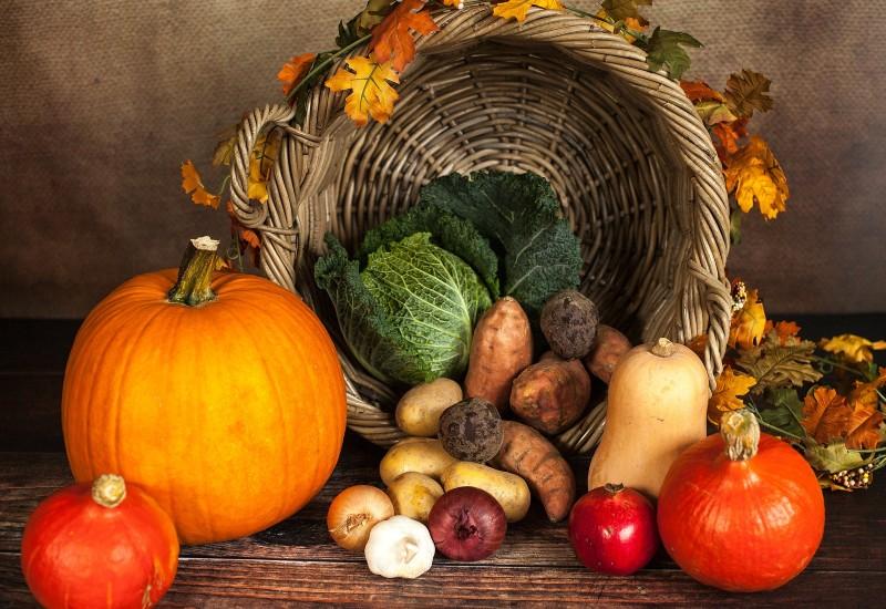 Imagem mostra vários vegetais