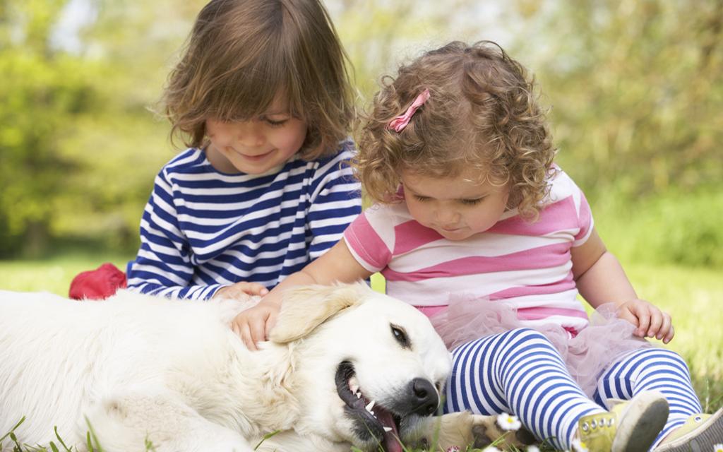 Blog Unimed_animal e criança
