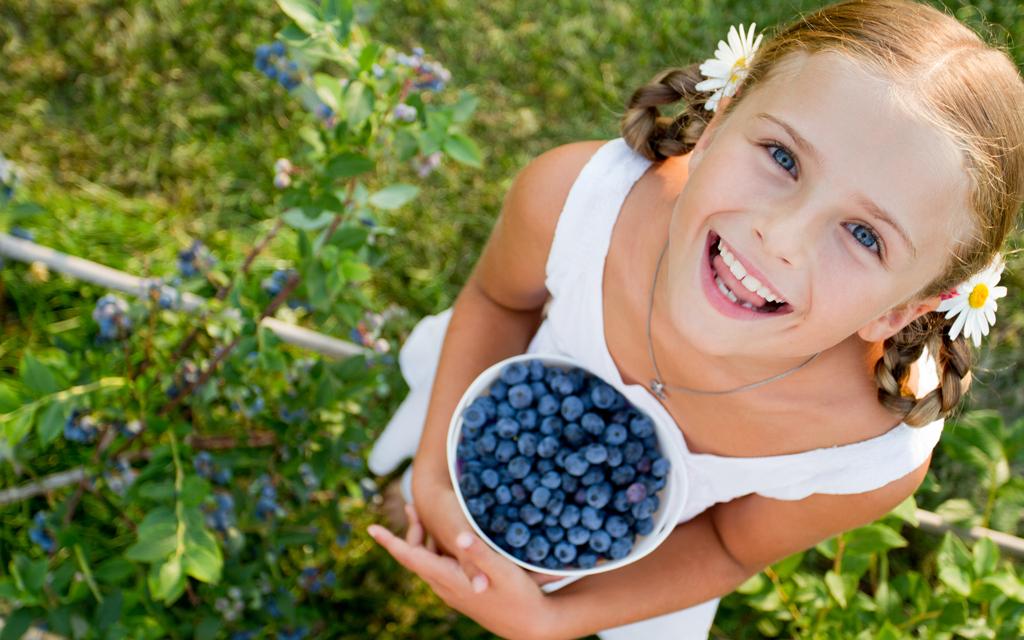 Blog Unimed VTRP Frutas saúde e prevenção