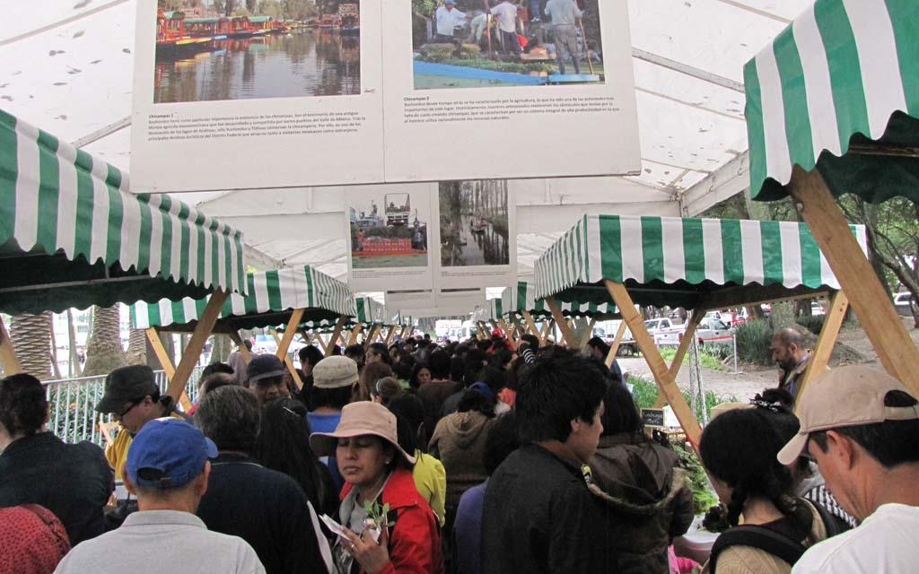 Novo México Mercado do Escambo (1) Blog Unimed