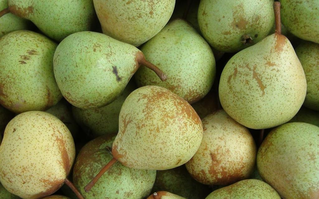 pera fruta inverno blog unimed vtrp