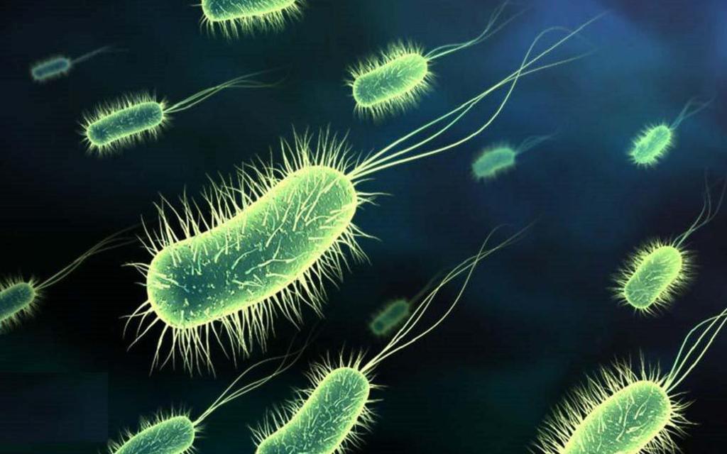 Tuberculose Blog Unimed VTRP 2