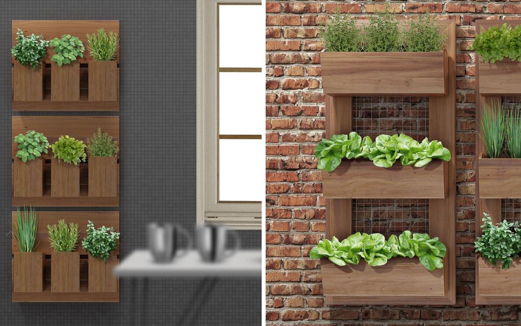 Blog Unimed VTRP Como Fazer um Jardim Vertical