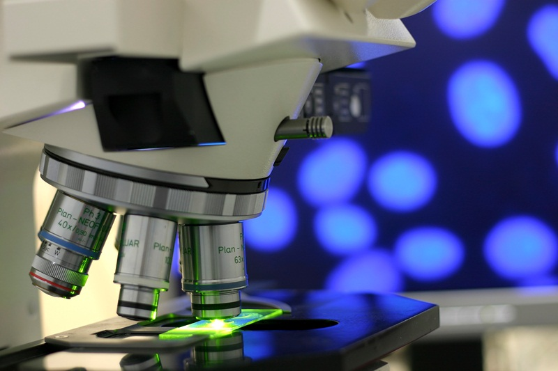 Projeto Eliminar a Dengue Blog Unimed VTRP 2