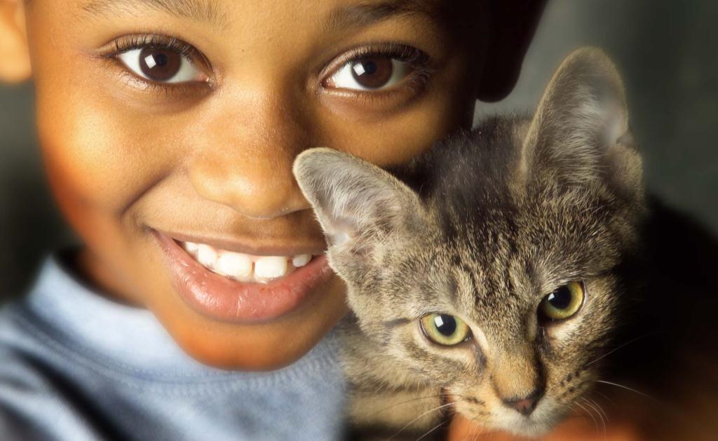 Animais estimação blog unimed vtrp 8