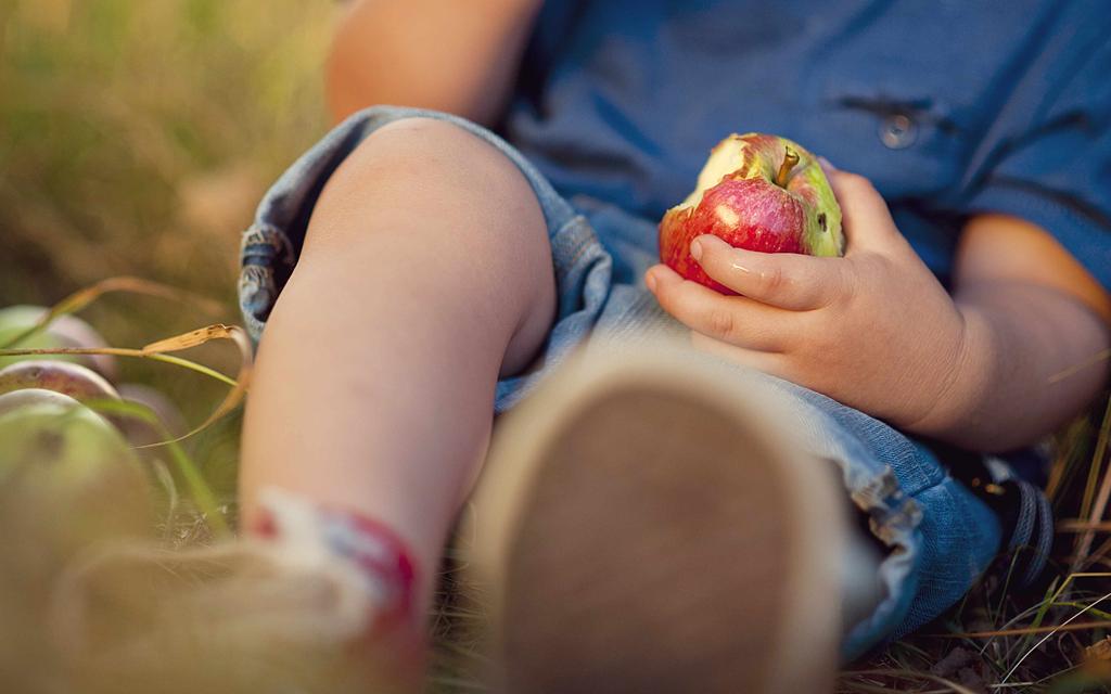 Blog Unimed VTRP Comida saudável para crianças