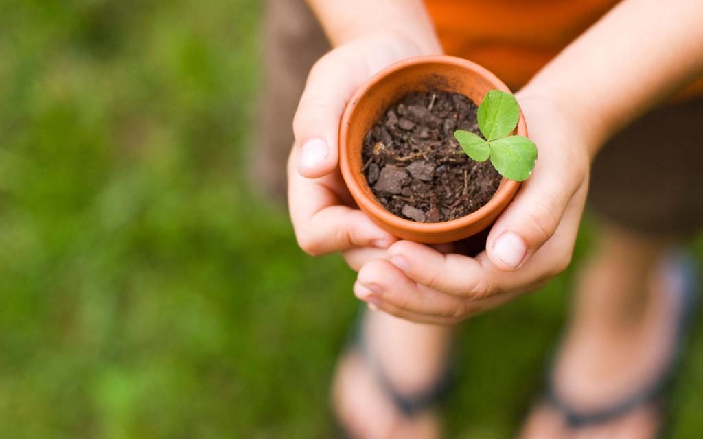 Blog Unimed VTRP Blog Cuidar Meio Ambiente