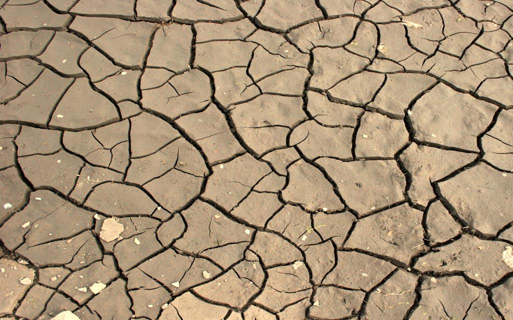Mudanças Climaticas Blog Unimed VTRP2