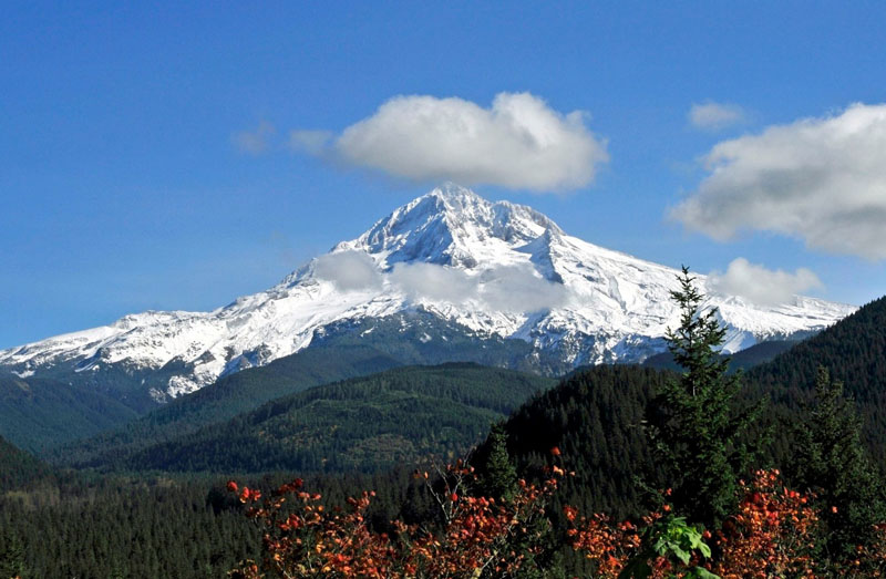 Cidades mais verdes Portland Blog Unimed VTRP 4